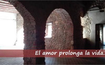 El amor prolonga la vida