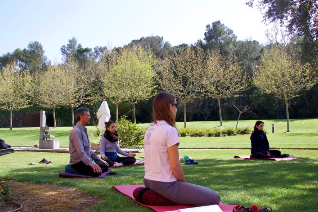 Meditación jardín I